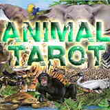 Tarot of the Animals
